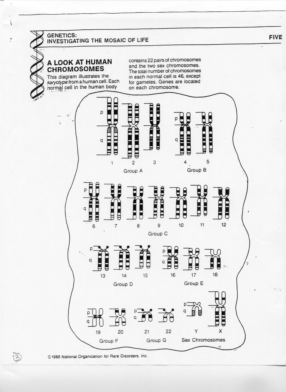 General Biology Ii Bio 12 On Manifold Scholarship At Cuny [ 2157 x 1571 Pixel ]