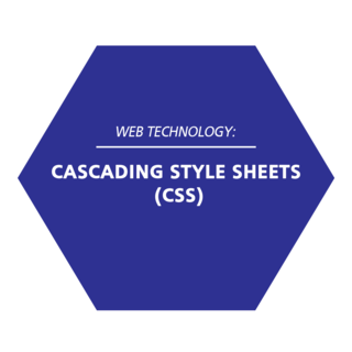 Thumbnail image for Cascading Style Sheets (CSS)